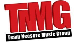 cropped-final-tnmg-logo.jpg
